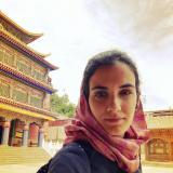 Laura Lettere's picture